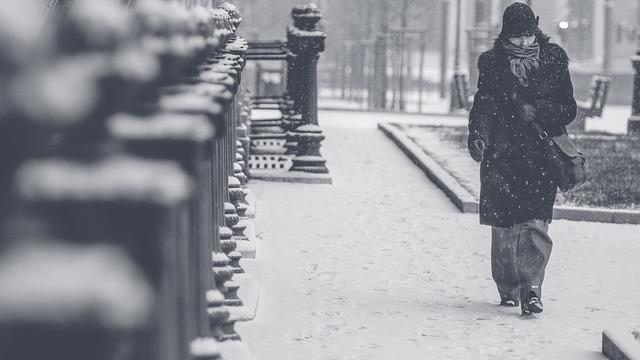 冬の画像:目から鱗の耳寄り情報局