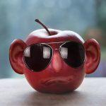 耳とメガネの画像:目からウロコの耳寄り情報局