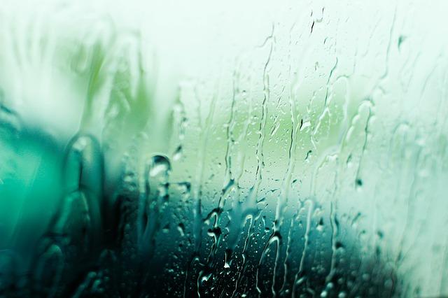 雨の画像:目からウロコの耳寄り情報局