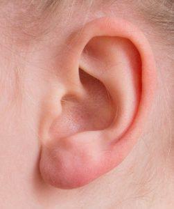 子供の耳の画像:目からウロコの耳寄り情報局