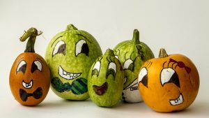 5つのかぼちゃの画像:目からウロコの耳寄り情報局